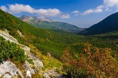 Valle di Kezmarska, montagne di Tatry Fotografia Stock Libera da Diritti