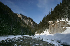 Valle di Koscieliska, Tatra immagini stock libere da diritti
