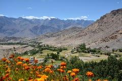 Valle di Ladakh, India Immagini Stock Libere da Diritti