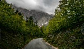 Valle di Logar Fotografia Stock