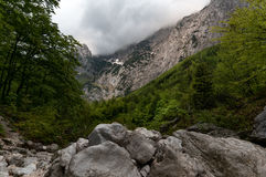 Valle di Logar Immagini Stock