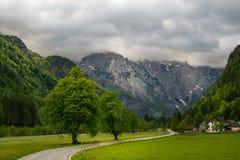 Valle di Logar Fotografie Stock