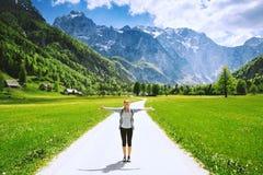 Valle di Logar o dolina di Logarska, Slovenia, Europa Fotografia Stock
