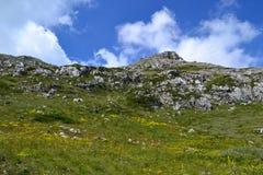 Valle di Magaro Immagine Stock