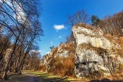 Valle di Mnikowska del calcare in Jura Krakowsko-Czestochowska fotografia stock
