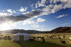 Valle di Orkhon Fotografia Stock