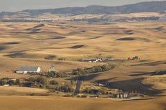 Valle di Palouse, Washington State orientale Immagini Stock Libere da Diritti