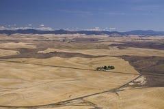 Valle di Palouse, Washington State orientale Immagini Stock