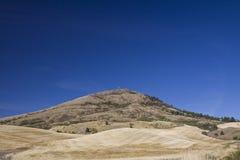 Valle di Palouse, Washington State orientale Immagine Stock