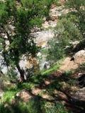 Valle di paradiso Agadir Marocco 7 fotografia stock libera da diritti