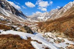 Valle di piccolo ruscello in montagne della Siberia orientale Immagini Stock