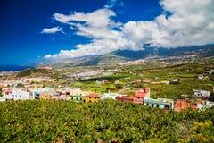 Valle di Puerto de la Cruz con i bananeti e il agricultura Immagini Stock