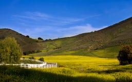 Valle di Santa Rosa Immagini Stock Libere da Diritti