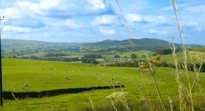 Valle di Shap, Cumbria Fotografie Stock