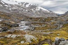 Valle di Videdalen e le montagne di Strynefjellet Fotografie Stock Libere da Diritti