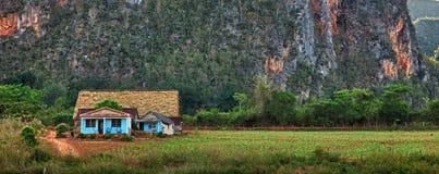 Valle di Vinales, Cuba. Immagine Stock