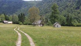 Valle di Voje all'estremità della gola di Mostnica non lontano dal lago Bohinj in Slovenia Immagini Stock Libere da Diritti