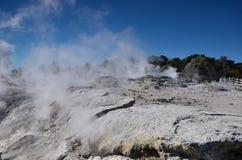 Valle di Whakarewarewa dei geyser Nuovo Zelandiiya Geotermalny Rese Immagine Stock