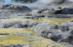 Valle di Whakarewarewa dei geyser Nuovo Zelandiiya Geotermalny Rese Fotografie Stock Libere da Diritti