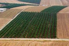 Valle di Yezreel Immagini Stock