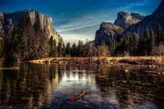 Valle di Yosemite di mattina, parco nazionale di Yosemite, California Immagini Stock Libere da Diritti