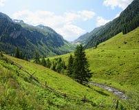 Valle di Zillertal in alpi europee Austria nell'ora legale Immagine Stock Libera da Diritti