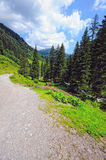 Valle di Zillertal in alpi europee Austria nell'ora legale Fotografia Stock Libera da Diritti