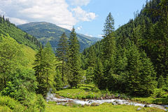 Valle di Zillertal in alpi europee Austria nell'ora legale Immagini Stock Libere da Diritti