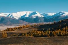Valle e montagna della neve, montagne di Altai, cresta di Chuya, Siberia ad ovest Immagine Stock