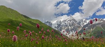 Valle e montagne alpine Fotografie Stock Libere da Diritti