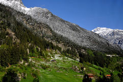 Valle e montagne nevose della Svizzera Immagine Stock