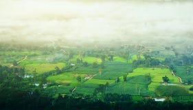 Valle e nuvola della montagna Fotografia Stock