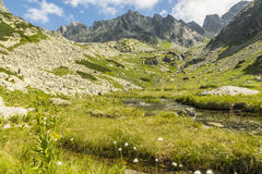 Valle en las montañas de Tatra - Dolina Zlomisk (dolina de Zlomiska, de Zlomiskova, Zlomiska, dolina Zlomisk) Imagenes de archivo