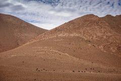 Valle en montañas de atlas, Marruecos del nómada Foto de archivo