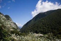 Valle en Sochi Fotos de archivo