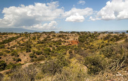 Valle en Tanzania Fotografía de archivo libre de regalías