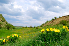Valle en Transilvania Fotos de archivo