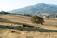 Valle entre las montañas Imagenes de archivo
