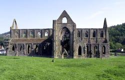 Valle escénico de la horqueta, abadía de Tintern Imágenes de archivo libres de regalías