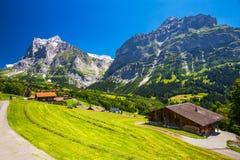 Valle famosa di Grindelwald, foresta verde, chalet delle alpi in Berner Oberland, Svizzera Fotografie Stock