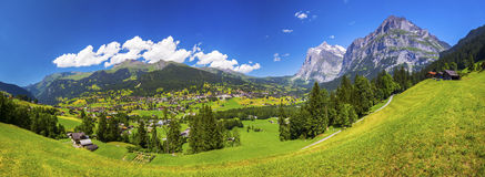 Valle famosa di Grindelwald, foresta verde, chalet delle alpi ed alpi svizzere, Berner Oberland, Svizzera Fotografia Stock Libera da Diritti
