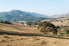 Valle fra le montagne Immagini Stock