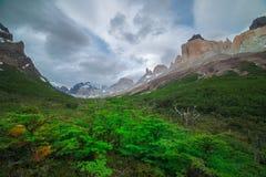 Valle Frances i Torres del Paine Arkivfoto