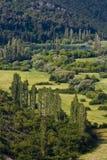Valle fruttuosa del fiume di Krka Fotografie Stock