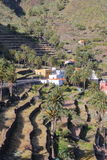 VALLE GRAN REY, LA GOMERA, SPAIN: Terraced fields and palm trees stock images