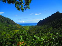 Valle hawaiana Immagini Stock Libere da Diritti