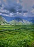 Valle hermoso de Leepa imagen de archivo libre de regalías