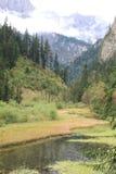 Valle hermoso en el parque nacional de Jiuzhaigou de Sichuan China Imagen de archivo libre de regalías