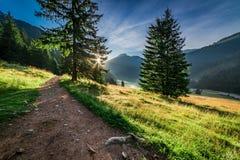 Valle hermoso en las montañas de Tatra en el amanecer en Polonia Imágenes de archivo libres de regalías