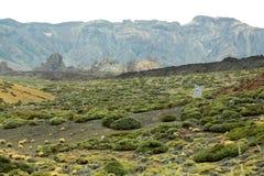 Valle idílico de la lava del desierto con la hierba verde Fotografía de archivo